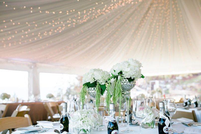Tent Liner & Twinkle Lights