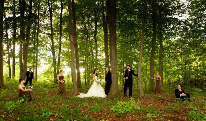 Whimsical forest settings