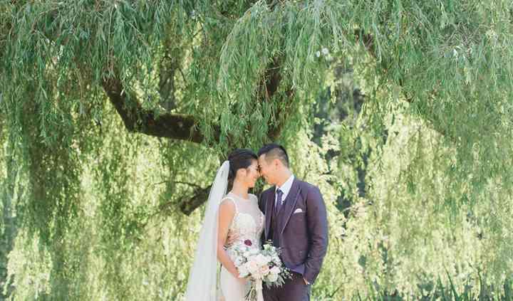 Heron Lake Willow Tree