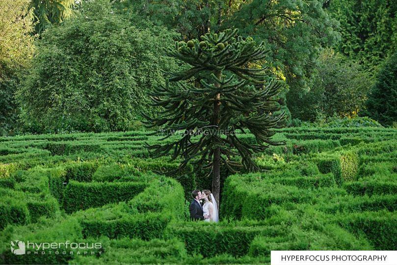 Photo 23 Of 27 Vandusen Botanical Garden
