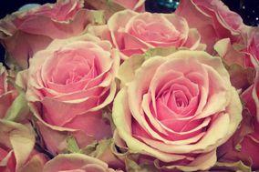 Little Flower Weddings Niagara