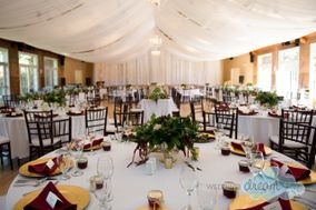Wedding Dream Decor & Flowers