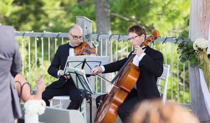 Cadenza Strings