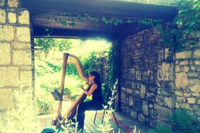 Rachel Nolan - Harpist
