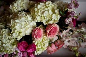 Gemini Flowers