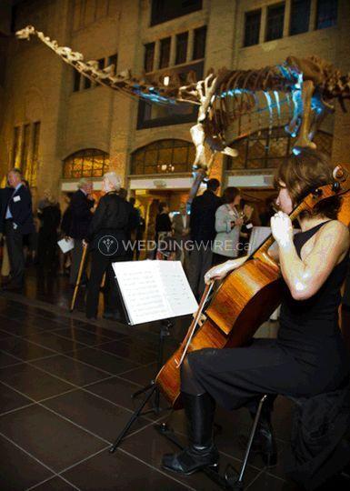 Solo cello ROM