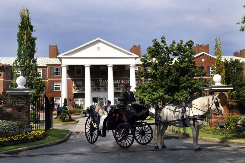 Outdoor with horse & carriage