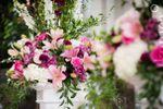 Casa Flowers