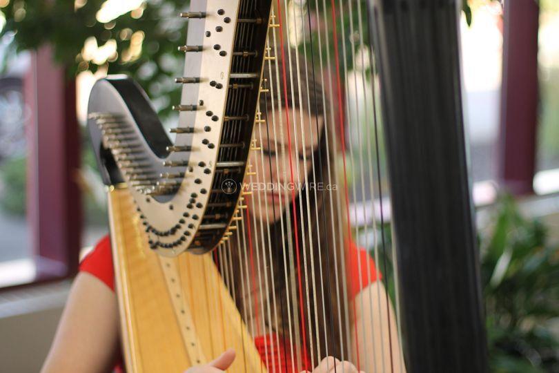 The Northern Harpist