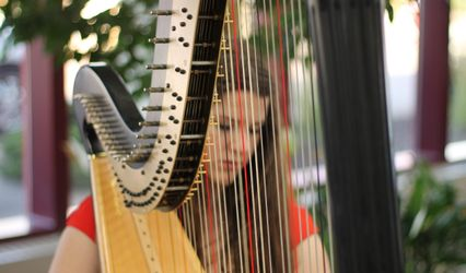 The Northern Harpist