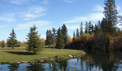Pine and Pond