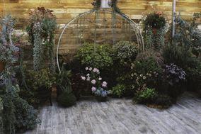 New Beginnings Greenhouse