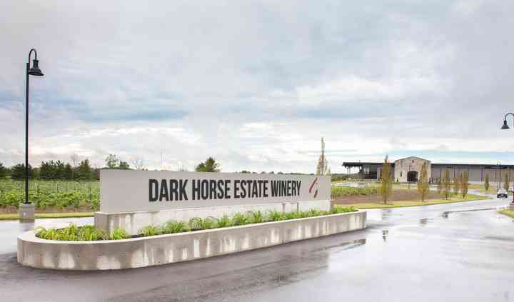 Dark Horse (Rebel Hearts)