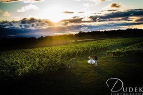 Dark Horse Estate Winery