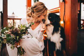 Evergreen Weddings