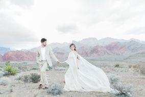 Beige Weddings