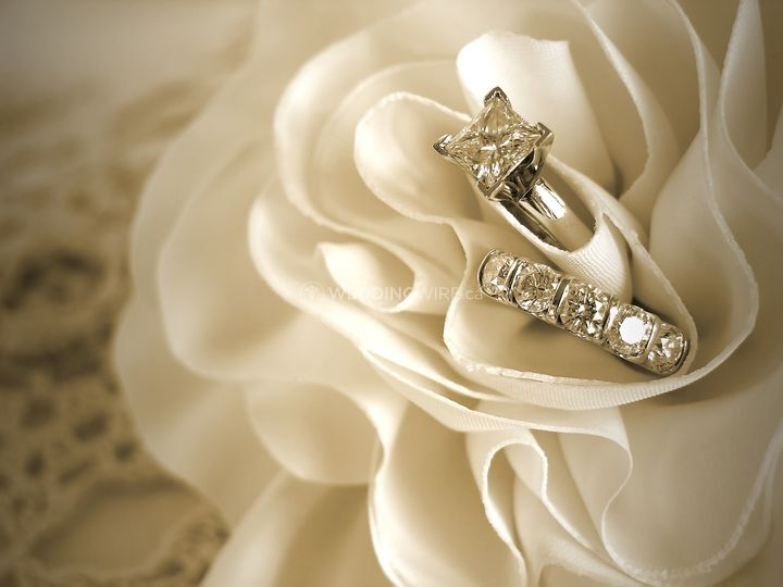 Hilton Wedding Rings