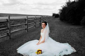 Alisha Jackson Photography