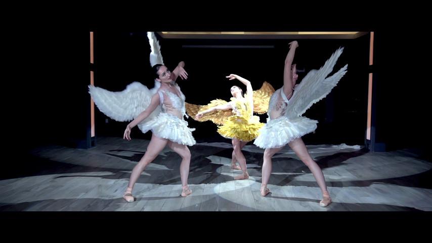 53114131b Ballet