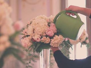 Wedding at the Ritz-Carlton Montreal