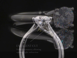 The Secret Heart Engagement Ring