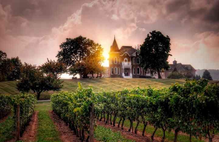 The Top 10 Winery Wedding Venues In Ontario