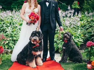 6 Ways to Include Your Pet in Your Wedding
