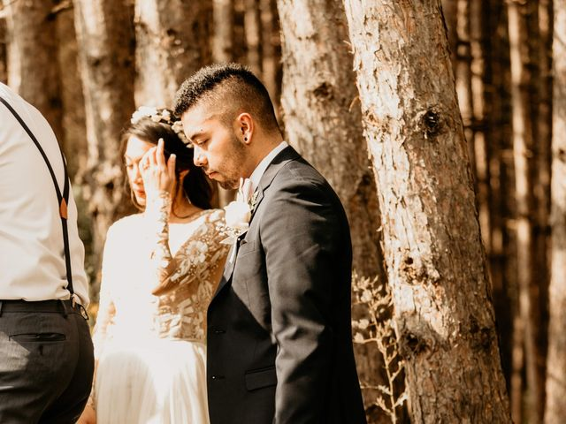 Phrynyll and Chester's wedding in Mono, Ontario 216