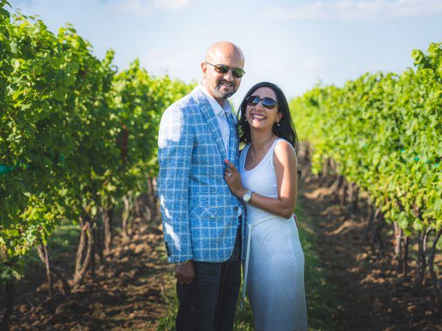 Bav and Drithal's wedding in Niagara on the Lake, Ontario 2