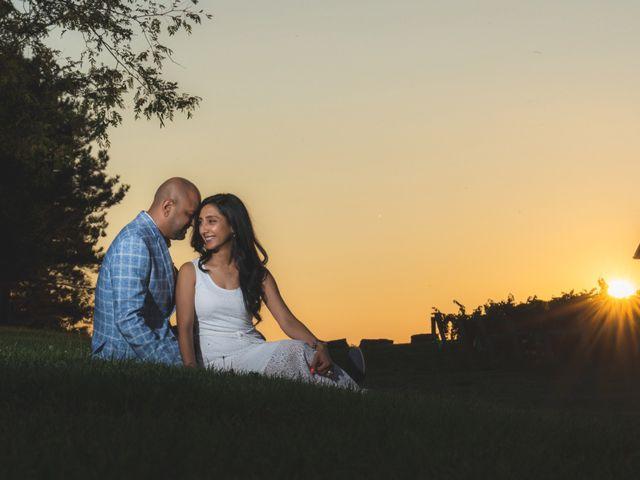 Bav and Drithal's wedding in Niagara on the Lake, Ontario 28
