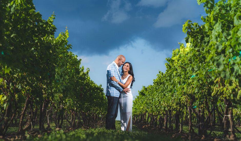 Bav and Drithal's wedding in Niagara on the Lake, Ontario