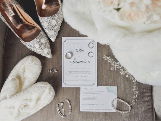 Jamie and Lia's wedding in Toronto, Ontario 1