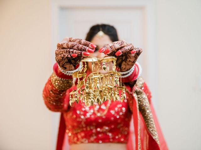 Tina and Sahil's wedding in Toronto, Ontario 1