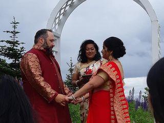 The wedding of Nivedita and Robert 1