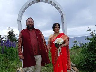 The wedding of Nivedita and Robert 3