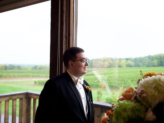 Jason and Joan's wedding in Vineland, Ontario 10