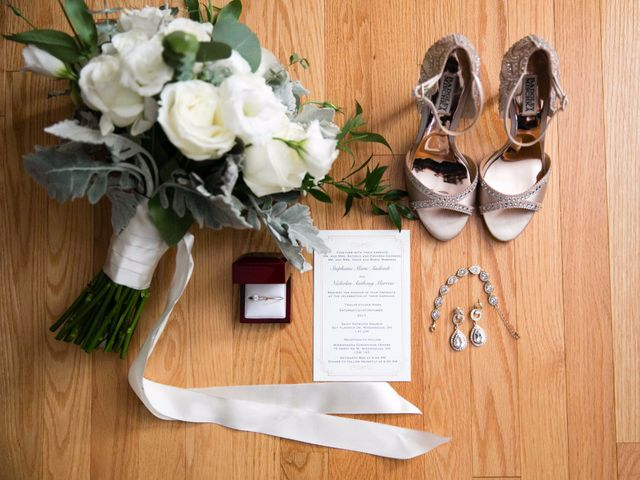 Nick and Stephanie's wedding in Mississauga, Ontario 1