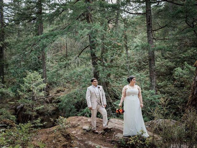 Raj and Mahla's wedding in Sooke, British Columbia 34