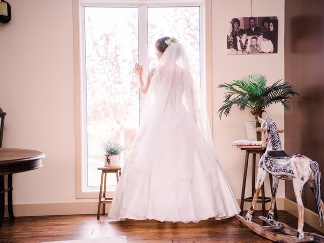 Sieger and Mariana's wedding in Edmonton, Alberta 8