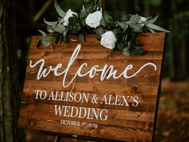 Alex and Allison's wedding in Barrie, Ontario 13