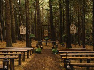 The wedding of Erin and Sashar 2