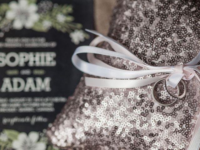 Adam and Sophie's wedding in Nicolet, Quebec 2