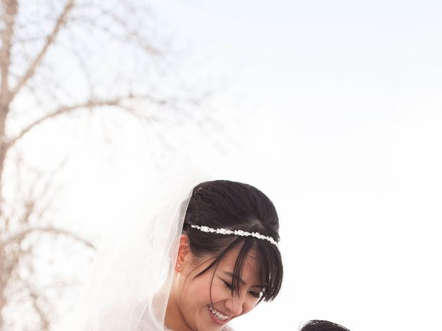 David and Jane's wedding in Calgary, Alberta 22