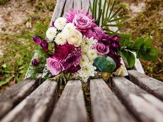 The wedding of Sara and Shaun 2