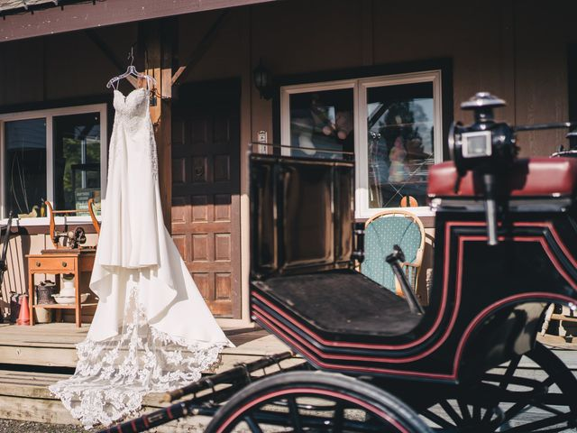 Navid and Kazmeen's wedding in Langley, British Columbia 4