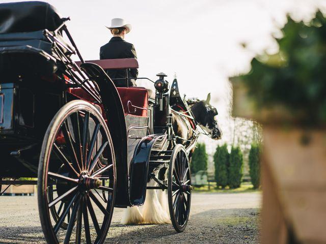 Navid and Kazmeen's wedding in Langley, British Columbia 7