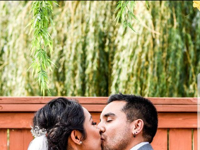 Sergio  and Nadia's wedding in Calgary, Alberta 2