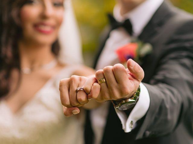 Nima and Yasaman's wedding in Toronto, Ontario 2