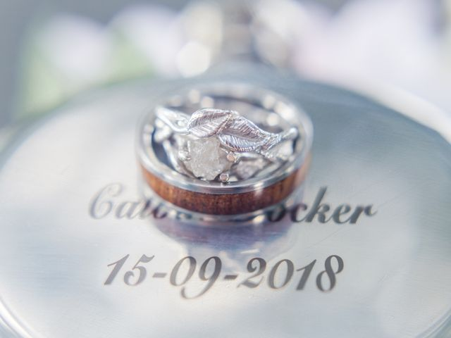 Calvin and Chrissy's wedding in Tillsonburg, Ontario 11