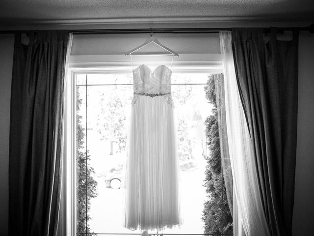 Eric and Celia's wedding in Niverville, Manitoba 4
